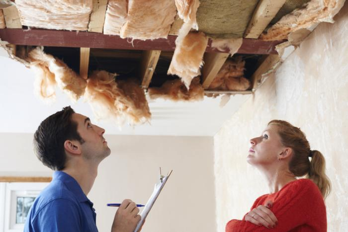 Choosing the Right Insulation for Your Green Home Project