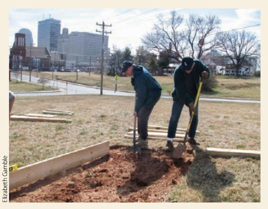 Community and Urban Gardening: Both An Environmental And Healthy Choice
