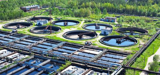 Transform Sewage Sludge To a Source of Green Energy