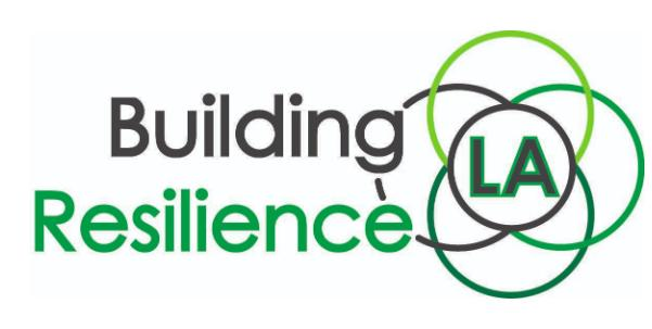 building resilience, sustainability, zero net energy