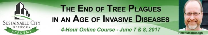 Webinar Series: The End of Tree Plagues June 7-8: 1-3pm EST
